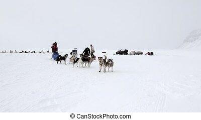People expedition on dog sled team husky Eskimo North Pole...
