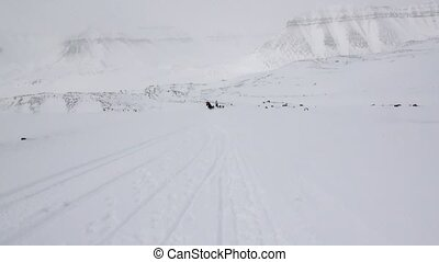 People expedition riding dog sled team on snowy road of North Pole in Arctic.