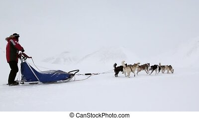 People expedition riding dog sled team on snowy road of...