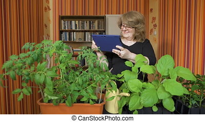 people, gardening, flowers and profession concept - close up of woman or gardener with tablet pc computer.