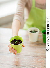 close up of woman hand holding pot with sprout