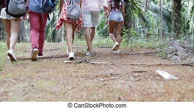 People Group With Backpacks Trekking On Forest Path, Back...