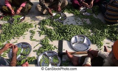 people hands hulled peas