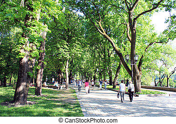 people having a rest in park with trees - people having a...