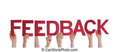 People Holding Feedback