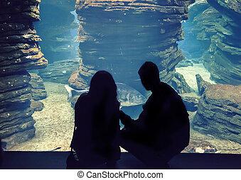 people in oceanarium