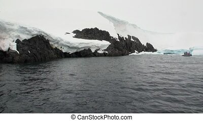 People in rubber boat look at blood on snow in snowy mountains of Antarctica.