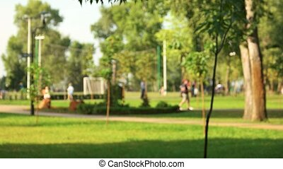 People in the summer park.