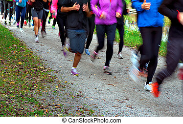 group of people jogging together in autumn
