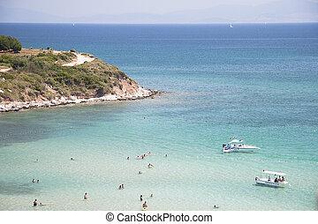people on the sea beach