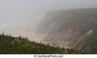 People on Top and Bottom of Cliff on Beach Cove - Steady,...