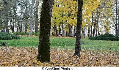 people rest autumn park
