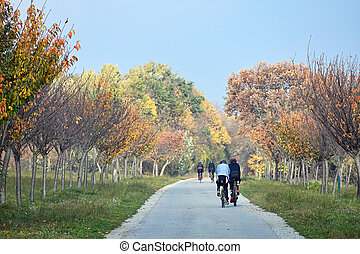 people ride bikes through the park in the fall