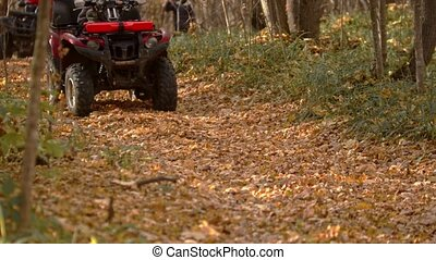 People riding atv in the autumn forest. Mid shot