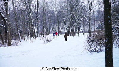 People taking a walk in park at twilight - PETROZAVODSK,...