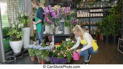 People taking care of flowers - Male and female employees in...