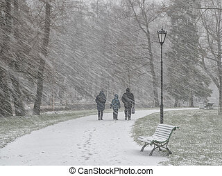 People under the snow in winter park.
