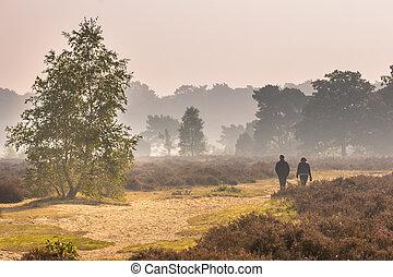 People walking along path through heathland on a morning in october under autumn light. Otterlo, Hoge Veluwe, the Netherlands