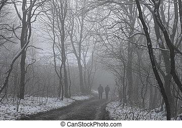 People walking by misty road in the park