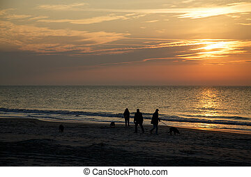 People Walking Dogs on Dawn Beach