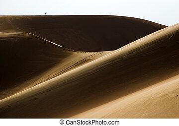People walking in sand dunes