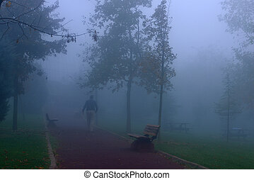 people walking in the park in the fog