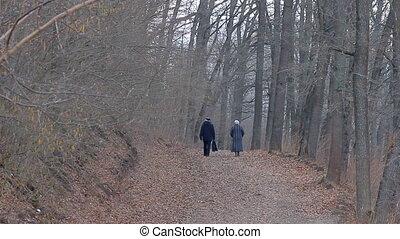 People Walking in the Park