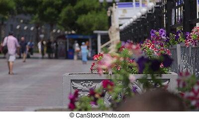 People walking in the resort city