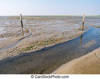 People walking on mudflat and tideway marked with wooden poles at low tide of Waddensea near Schiermonnikoog, Netherlands