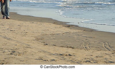 people walking on the beach.