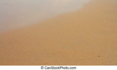 People walking on the sand