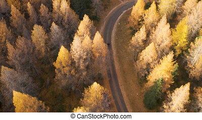 Dolomites Mountain Road, Aerial View.