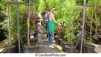 People watering flowers in garden