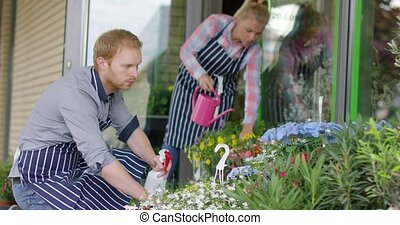 People watering flowers in shop - Side view of two young...