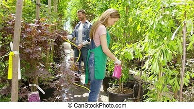 People watering plants on plantation - Side view of young...