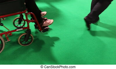 People, wheelchair on green - People walking, caretaker...