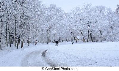people winter park snow