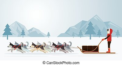 People with Arctic Dogs Sledding, Panorama Background -...