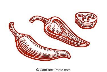 pepe peperoncini rossi, fette, vendemmia, isolato, mezzo, fondo., vettore, intero, bianco, inciso