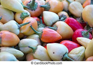 pepe peperoncino rosso, in, uno, mercato, vendita