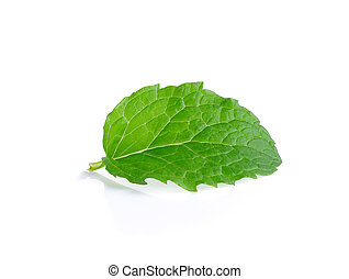 Peper mint isolated on the white background