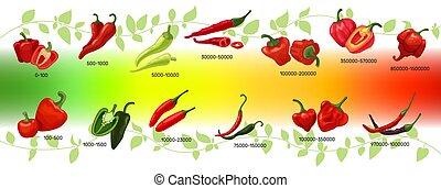 peperoni, rosso, baccelli, peperoncino, infographic, unità, scoville, vettore, scala, illustrazione, chilli, verde, calore