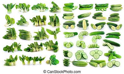 pepino, y, bok choy, (chinese, cabbage), aislado, blanco, plano de fondo