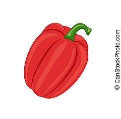 Pepper Fresh Homegrown Veggie Vector Illustration - Pepper ...