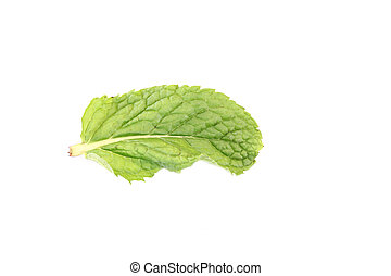Pepper Mint isolated. - Pepper Mint isolated on white...