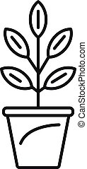 Pepper plant pot icon, outline style