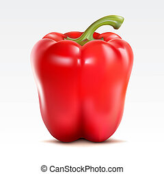 Pepper - Red pepper on the  white background