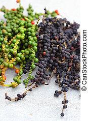Peppercorns - piper nigrum