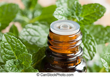 Peppermint essential oil - a bottle with fresh mint leaves