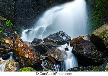 pequeño, cascada, con, musgo, rocks.